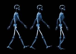 Walking Skeletons 3