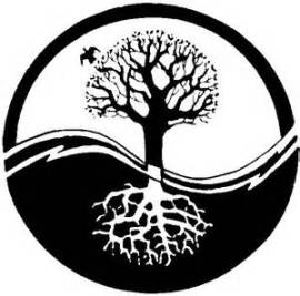 Yin Yang B 10 Tree of Life
